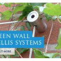 Green Wall Stainless Wire Trellis System Detail